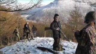 getlinkyoutube.com-Pheasant shooting. The beaters shoot.