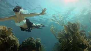 getlinkyoutube.com-GoPro HD: Shark Riders - Introducing GoPro's New Dive Housing