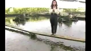 getlinkyoutube.com-دقيقة من اطرف مواقف المراسلين مع الماء