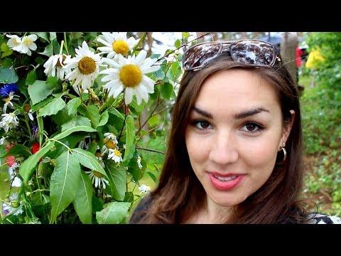 Swedish Midsummer Vlog | Dancing Around the Maypole
