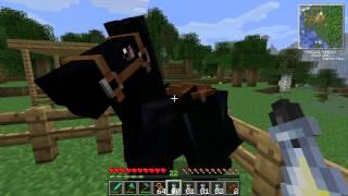 getlinkyoutube.com-Minecraft - Mo Creatures Pferdezucht-Guide (ab MC Version 1.4.5)