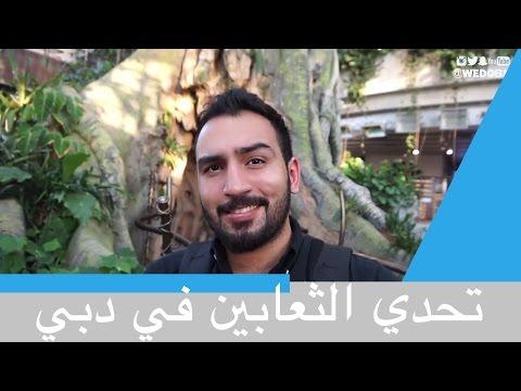 #mydubai | فلوق في دبي