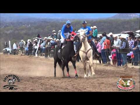 Carreras de Caballos en El Valle de Tacupeto 17 Enero 2015
