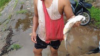 getlinkyoutube.com-จับปลาเข็งบืน เบิ่งขเจ้าว่านแหฝายน้ำล้น
