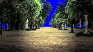 getlinkyoutube.com-Walking in the Forest - Royalty Free Green Screen Footage