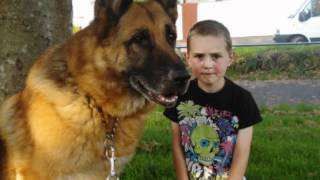R.I.P Max XXXX We all miss you