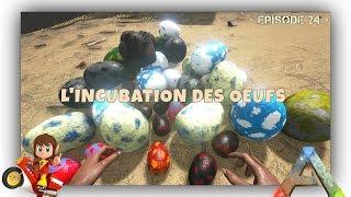 getlinkyoutube.com-ARK Survival Evolved - FR - Micro-Tutos à Gogo ! - Incubation des Oeufs - #24