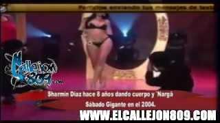 getlinkyoutube.com-Sharmin Diaz Hace 8 Años dando Cuerpo y Narga en Sabado Gigante en el 2004