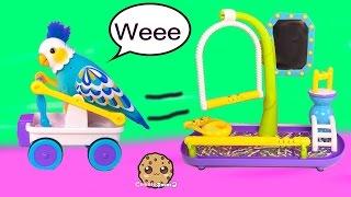 getlinkyoutube.com-Little Live Pets CleverKeet Interactive Talking Dancing Cart Car Driving Bird Cookieswirlc Toy Video