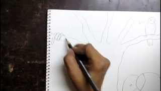 getlinkyoutube.com-How to draw a jungle scene for kids