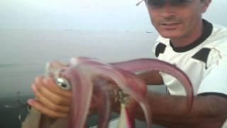 getlinkyoutube.com-La pesca del calamar desde embarcación