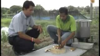 getlinkyoutube.com-อาหารปลาเม็ดแบบมือหมุน