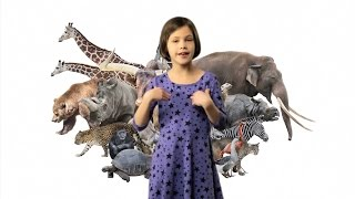 getlinkyoutube.com-ASL Animals Song Lesson for Kids - Learn how to sign Animals with Fireese