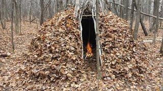 getlinkyoutube.com-BUSHCRAFT FOREST GROUP SHELTER