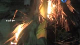 இணுவில் செகராசசேகரப்பிள்ளையார் கோவில் சொக்கப்பன் (05.12.2014)