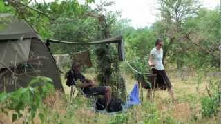 getlinkyoutube.com-A Day on Safari in Botswana