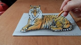 getlinkyoutube.com-Drawing 3D Tiger, Original and Real Anamorphic Illusion
