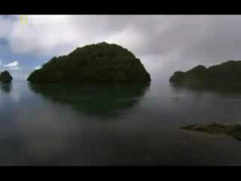 The Lost Tribe of Palau [1/5]