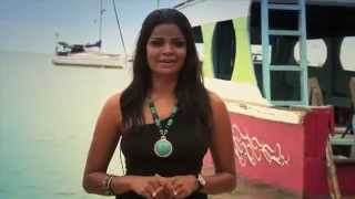 getlinkyoutube.com-Tour of Tobago 2013 - Lime Time at the Nylon Pool