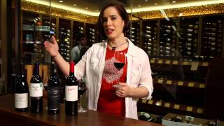 getlinkyoutube.com-Pinot Noir, Merlot, Cabernet Sauvignon, Shiraz, Syrah - Red Wine Guide