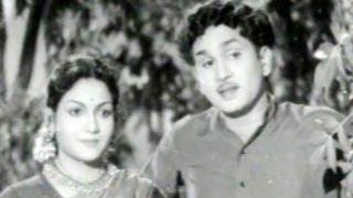 getlinkyoutube.com-Aada Pettanam Full Length Telugu Movie