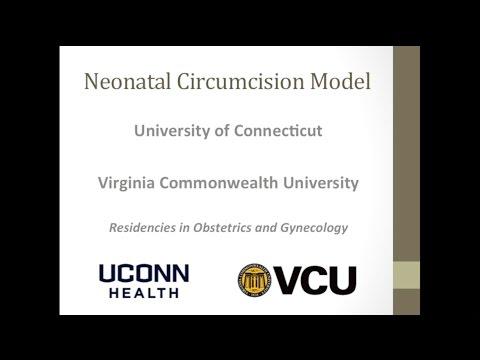 Neonatal Circumcision Model