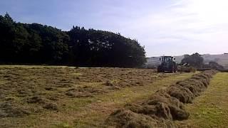 Elho 750 V-Twin Swather   Working grass rake