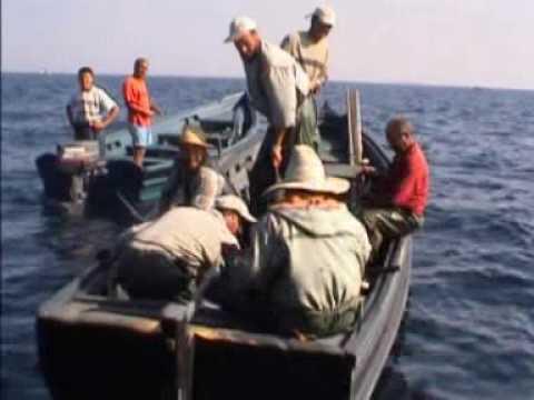 Awesome Tuna Fish - Morocco