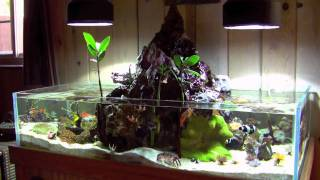 getlinkyoutube.com-Volcano Tank 032610