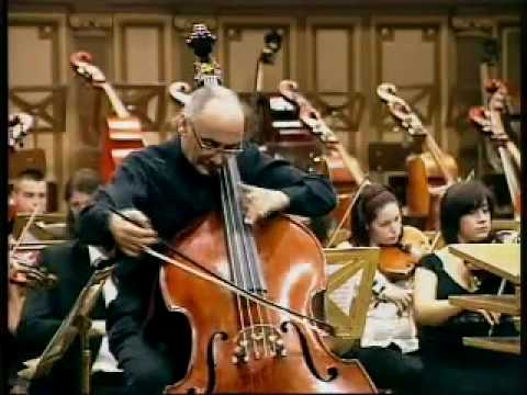 Catalin Rotaru, double bass, Haydn cello concerto part3