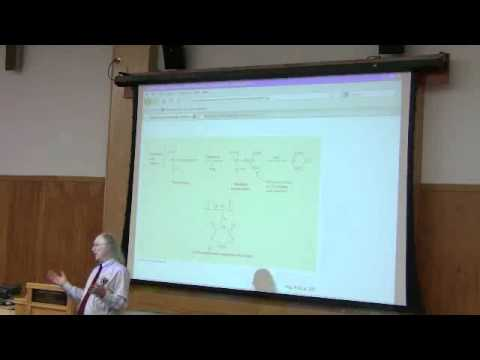 Vitamins and Nucleic Acids, Part 3 of 4