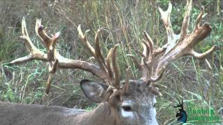 getlinkyoutube.com-322 Inch Whitetail Buck with a Crossbow in Alabama!