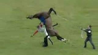 getlinkyoutube.com-Horse VS Man