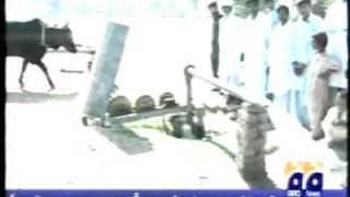 getlinkyoutube.com-A Pakistani Villager builds an Ox-Driven tube-well