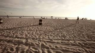 Fonzworth Bentley - Venice Beaches