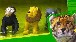 getlinkyoutube.com-ANIMAL PLANET MEGA DISCOVERY MEGA BARNYARD DINO DISCOVERY WILDLIFE BARNYARD BEST KIDS VIDEOS