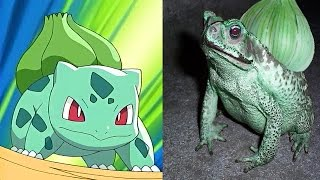 getlinkyoutube.com-10 Pokemon That Actually Exist In Real Life