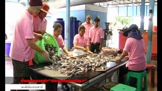 getlinkyoutube.com-VTS 01 1 ปลาดุกแดดเดียว : ของดีเมืองปทุมธานี
