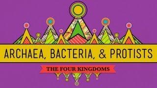 Old & Odd: Archaea, Bacteria & Protists - CrashCourse Biology #35