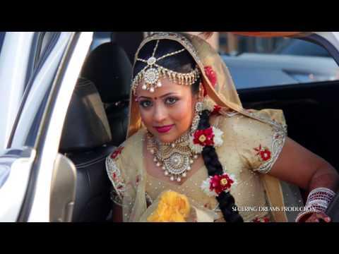 Malaysian Indian Wedding Highlights 2015 - Harvin Weds Anitha