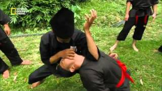 Fight Master : Silat Official Trailer