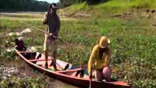 getlinkyoutube.com-Extreme Fishing Brazil Clip