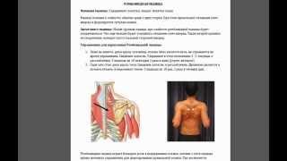 getlinkyoutube.com-Ромбовидная и малая грудная мышцы. Или почему немеют руки?
