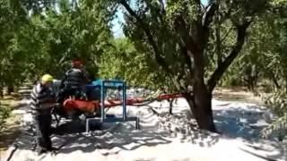 getlinkyoutube.com-ΑΜΥΓΔΑΛΑ ΜΑΖΕΜΑ 2013
