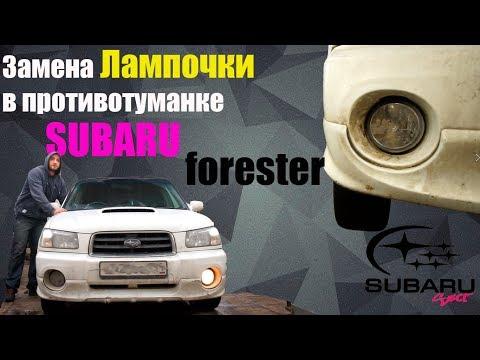 Меняем лампочку в ПТФ Subaru Forester SG
