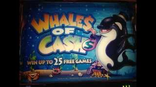 getlinkyoutube.com-★Whales of Cash Slot machine Lover ★☆MY ONE MONTH STORY☆ 5¢Slot $2.50 Bet
