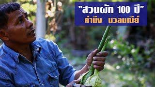 getlinkyoutube.com-สวนผัก 100 ปี โดยคำนึง นวลมณีย์