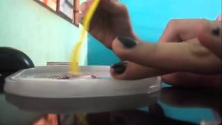 getlinkyoutube.com-Como fazer mechas usando creme