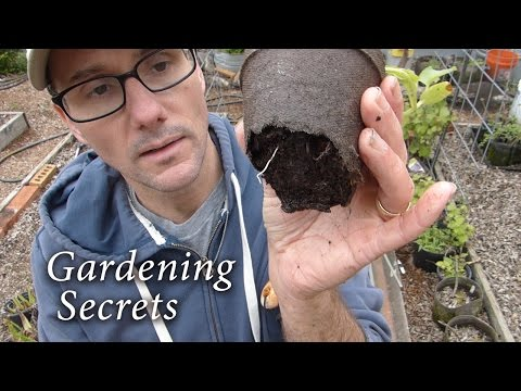 Gardening - Action Packed Guidance!