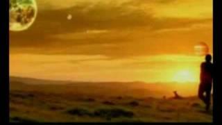 getlinkyoutube.com-Mr. Brightside Remix official Video
